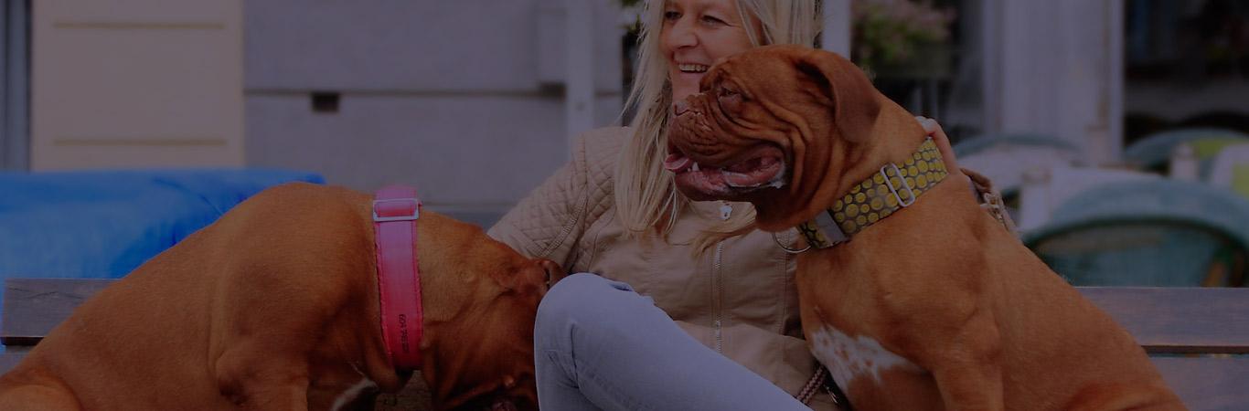 comunicacion-entre-perros-y-humanos