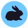 icono-conejo.jpg